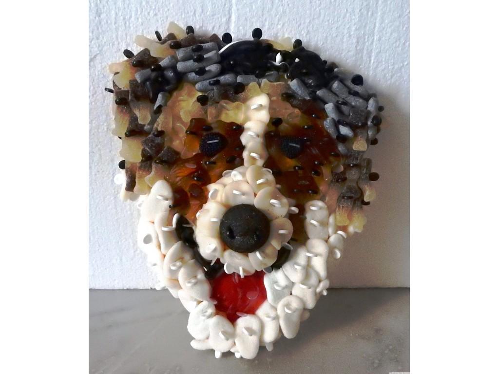 Chien ou tete de chien